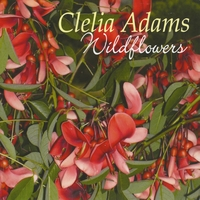 Clelia Adams - Wildflowers