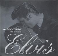 A Tribute to Elvis Presley - Travis Tritt - Lawdy Miss Glawdy