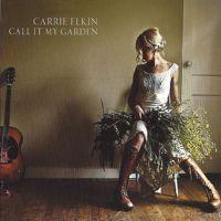 Carrie Elkin - Guilty Hands