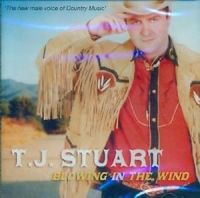 T.J. Stuart - Picture in a Frame
